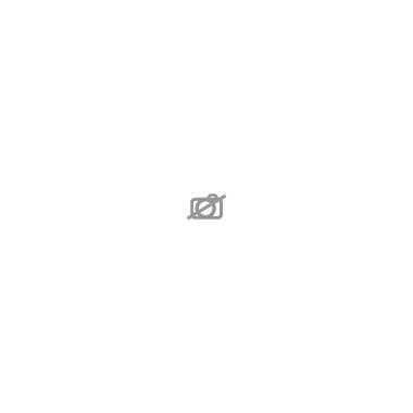 HYDRANGEA macrophylla D15 P X6 Schneeball 5-6